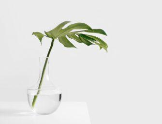 5 inspirerende TED talks over minimalisme