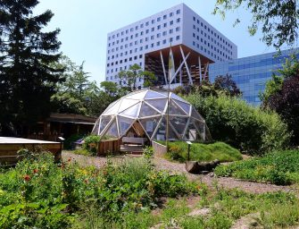 The Green Living Lab in Amsterdam
