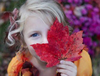 5x creatief met natuurlijke materialen: bladeren