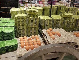 Zero waste winkelen bij Dekamarkt