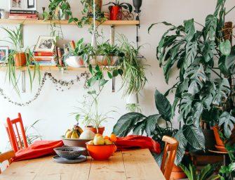 5 tips voor een duurzame interieur make-over